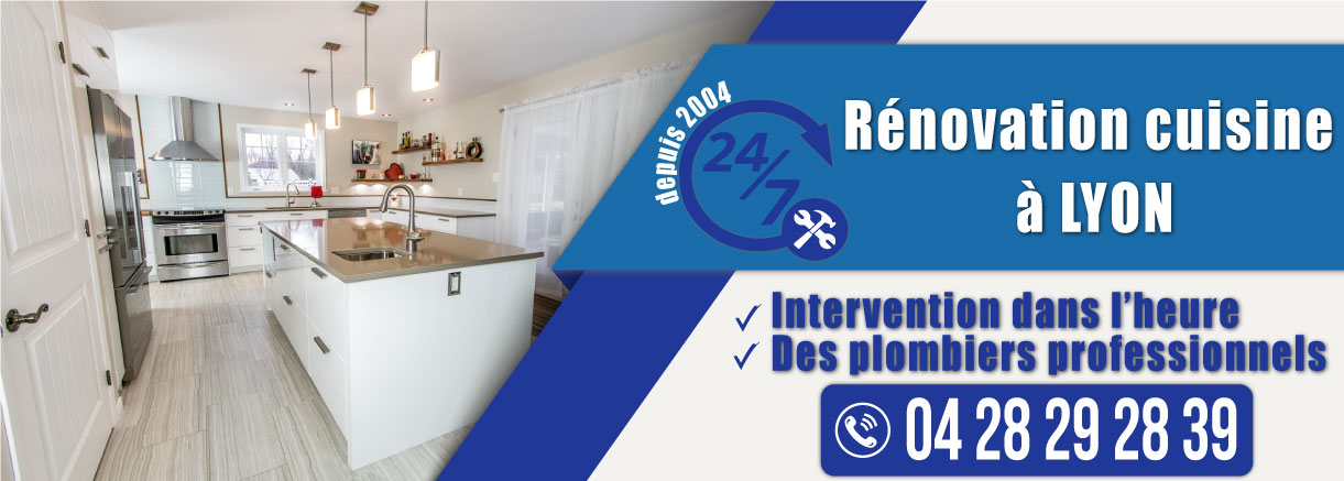 renovation cuisine paris